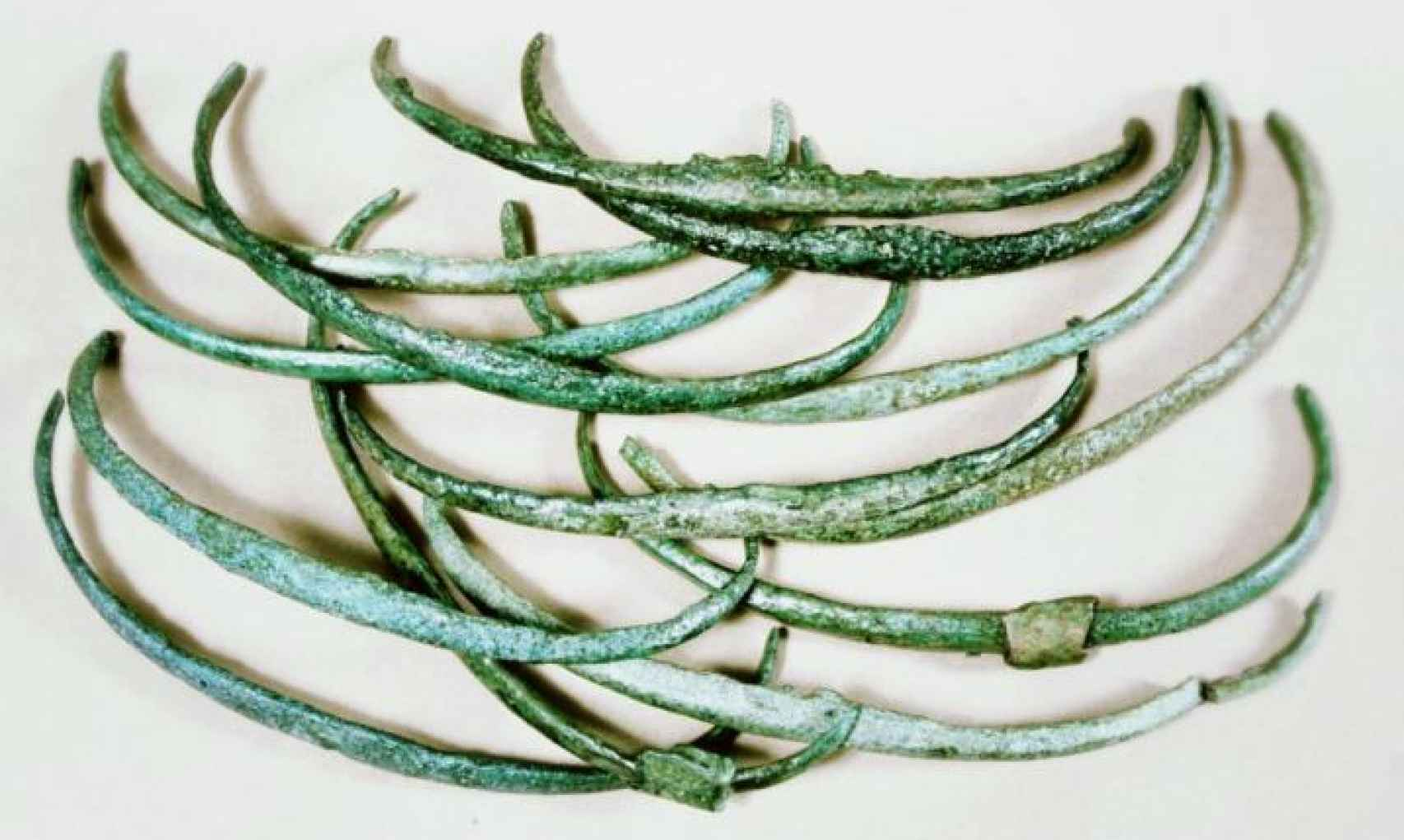 Las costillas de la Edad del Bronce.