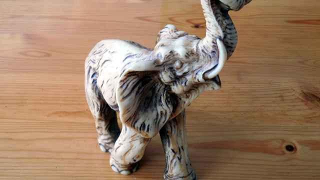 Cómo colocar el elefante de la suerte según el Feng Shui