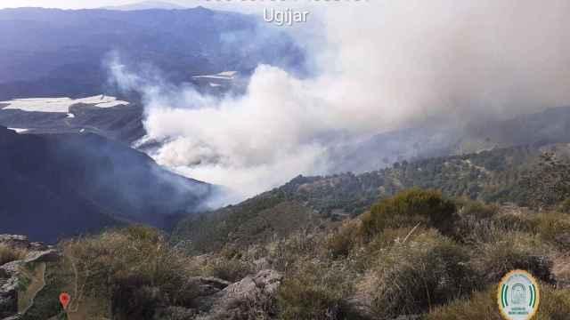 Imágenes del incendio declarado en Berja, Almería.