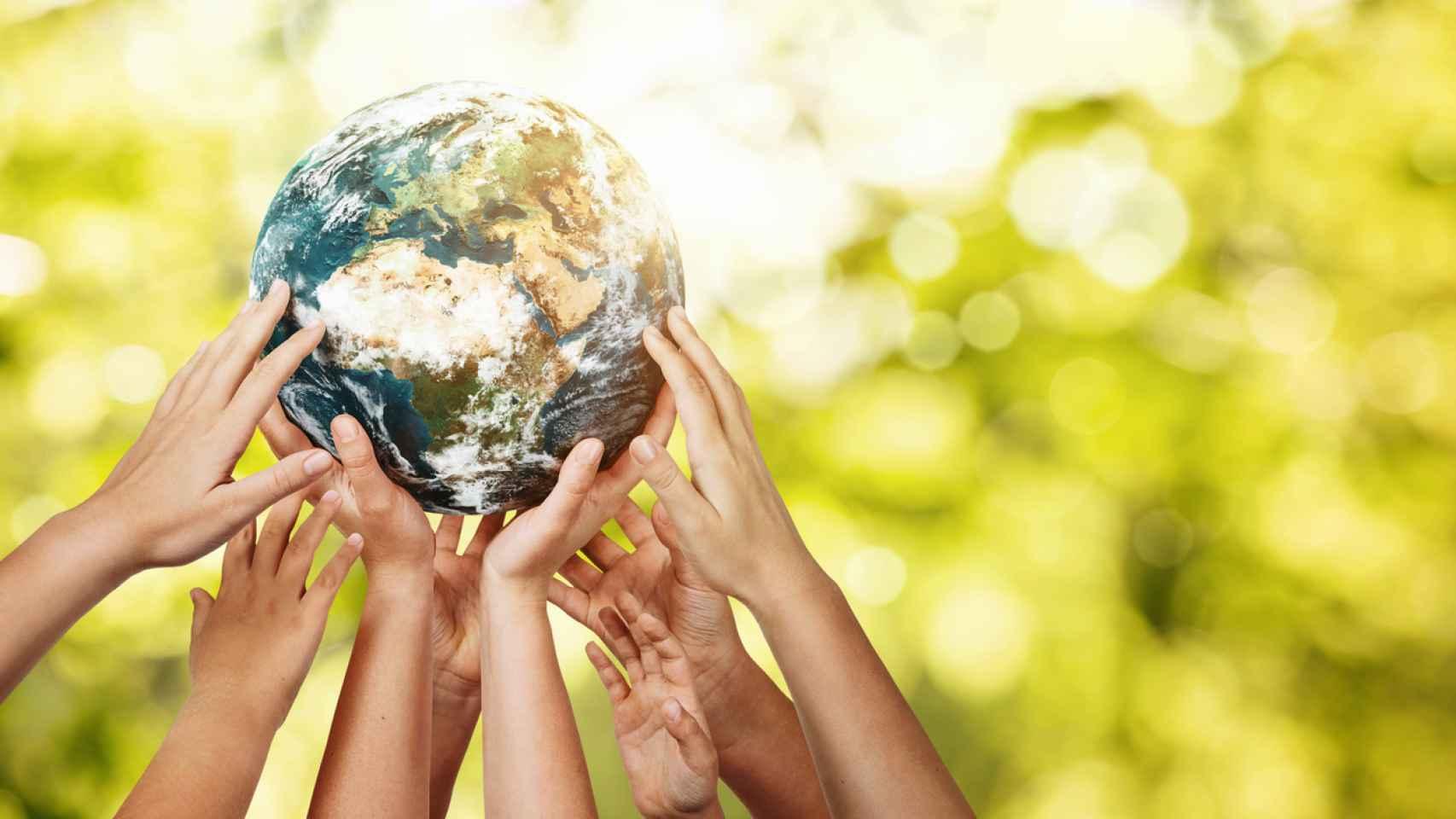 Día Mundial de la Educación Ambiental.