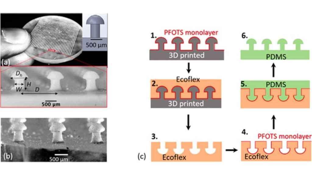 La muestra impresa en 3D en forma de hongo.