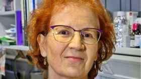 Margarita del Val cree que hasta después de Semana Santa no se relajarán las medidas contra el Covid