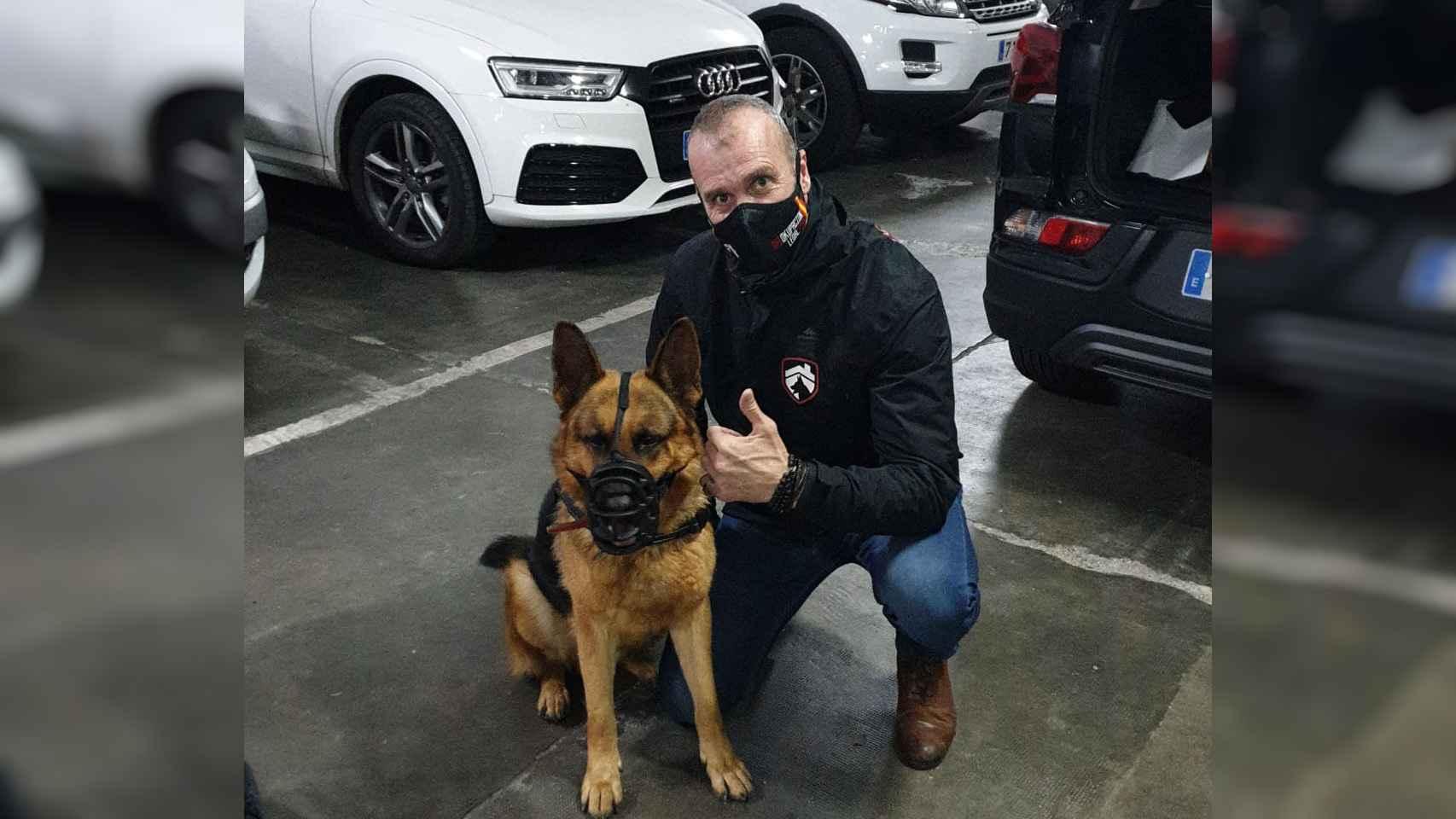 Los perros desokupas de Jaime, el efecto disuasorio de un pastor alemán o un dogo que triunfa