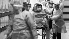 La gran ola de silencio de la pandemia