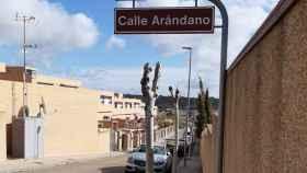 Poda de plátanos en la calle Arándano del barrio de Valparaíso de Toledo
