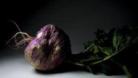 El gusto de las verduras feas (fotografía: Agustín Gómez y Rafael Monge)