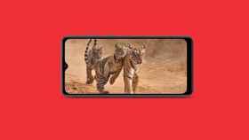 Samsung Galaxy M02: una nueva variante del Samsung Galaxy A02