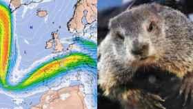 Las ondulaciones de chorro que afectan a España vs. la marmota Phil. ElTiempo.com.