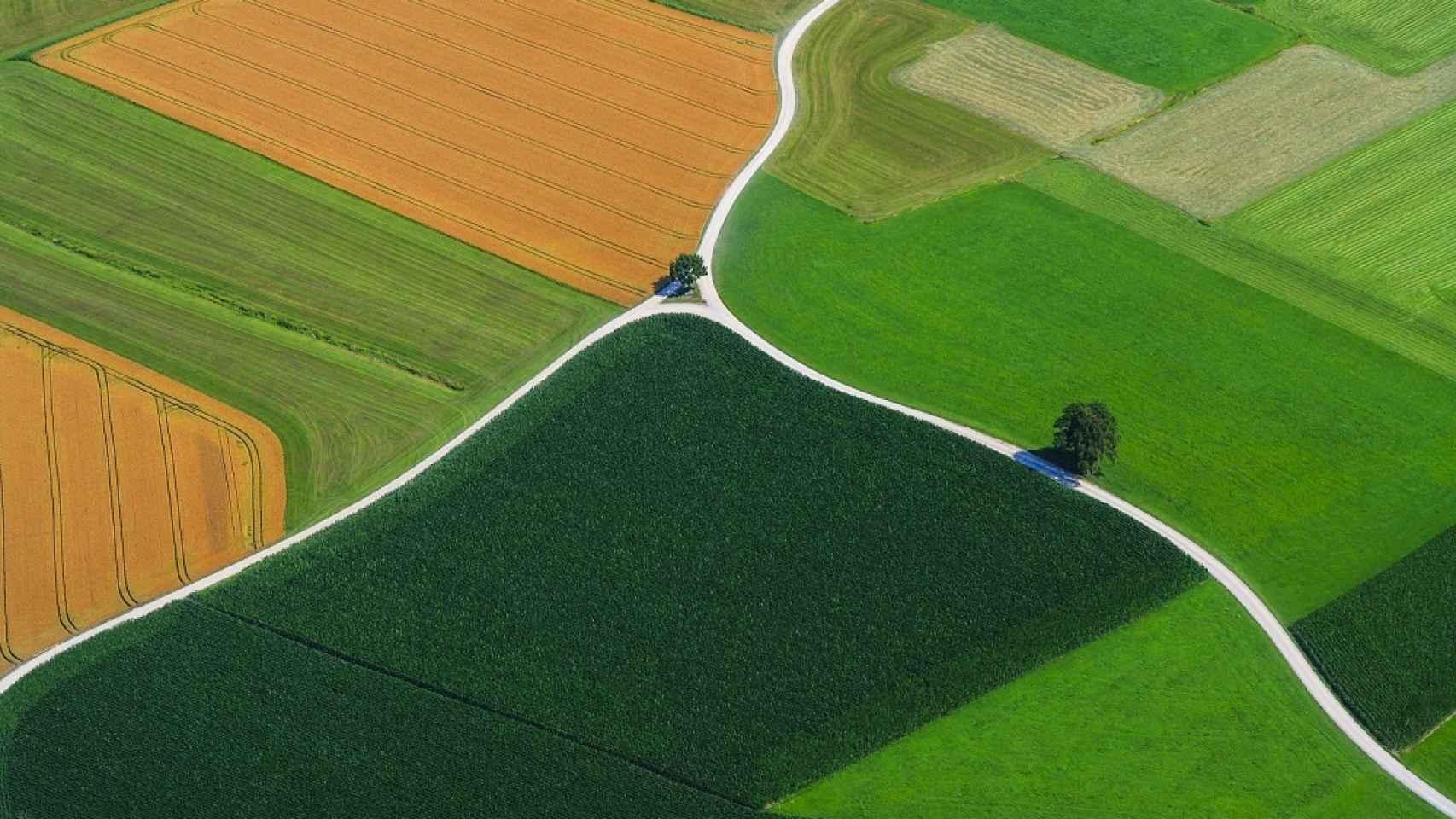 La Unión Europea usará satélites para evitar fraudes en la agricultura con la PAC