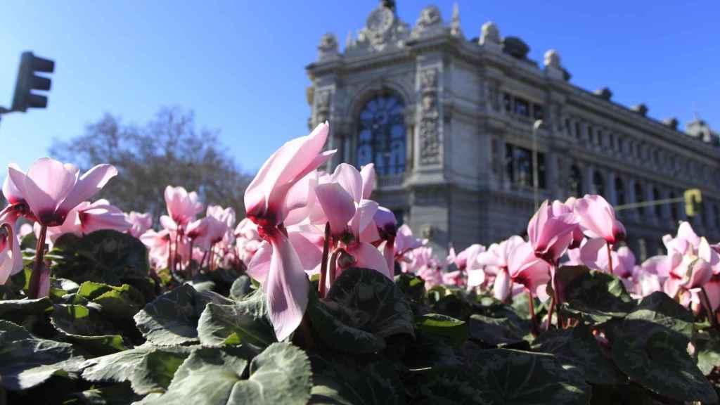 Fachada del Banco de España en una imagen de archivo.