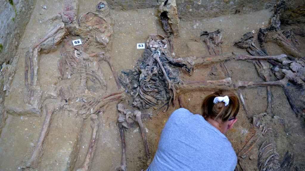 Restos óseos exhumados de una de las fosas comunes del cementerio de San Fernando.