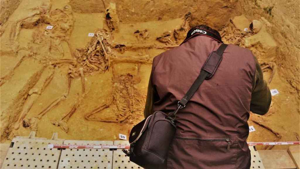 Restos óseos de los cadáveres de varios represaliados que fueron fusilados en San Fernando.