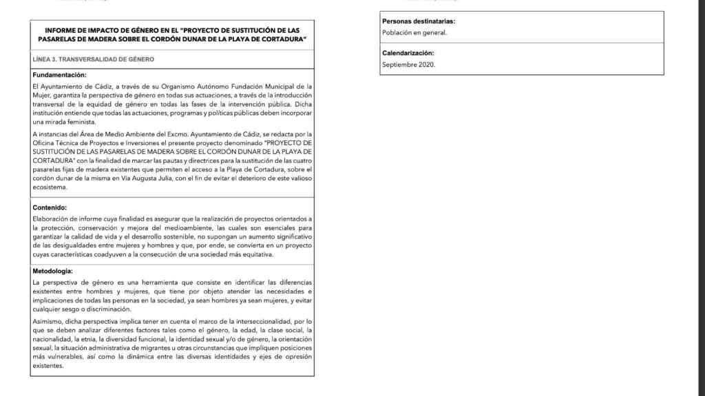Informe de la Fundación de la Mujer del Ayuntamiento de Cádiz
