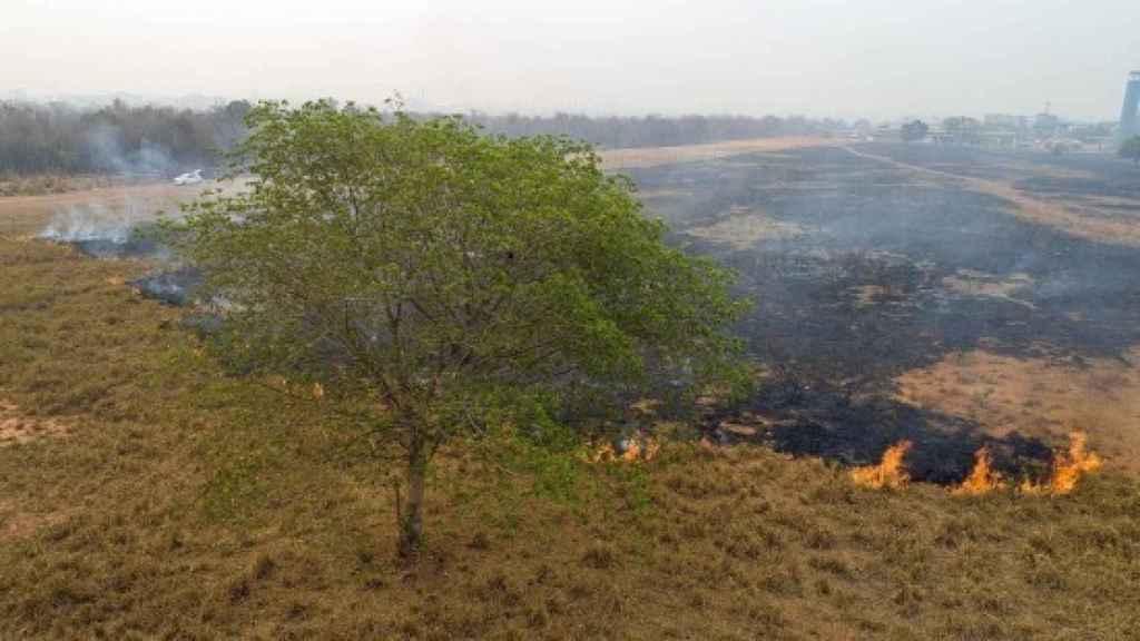 Imagen de archivo de la deforestación de la Amazonía brasileña.