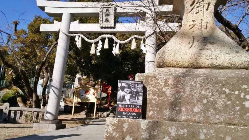 Libro 'Historia del kickboxing en Japón'