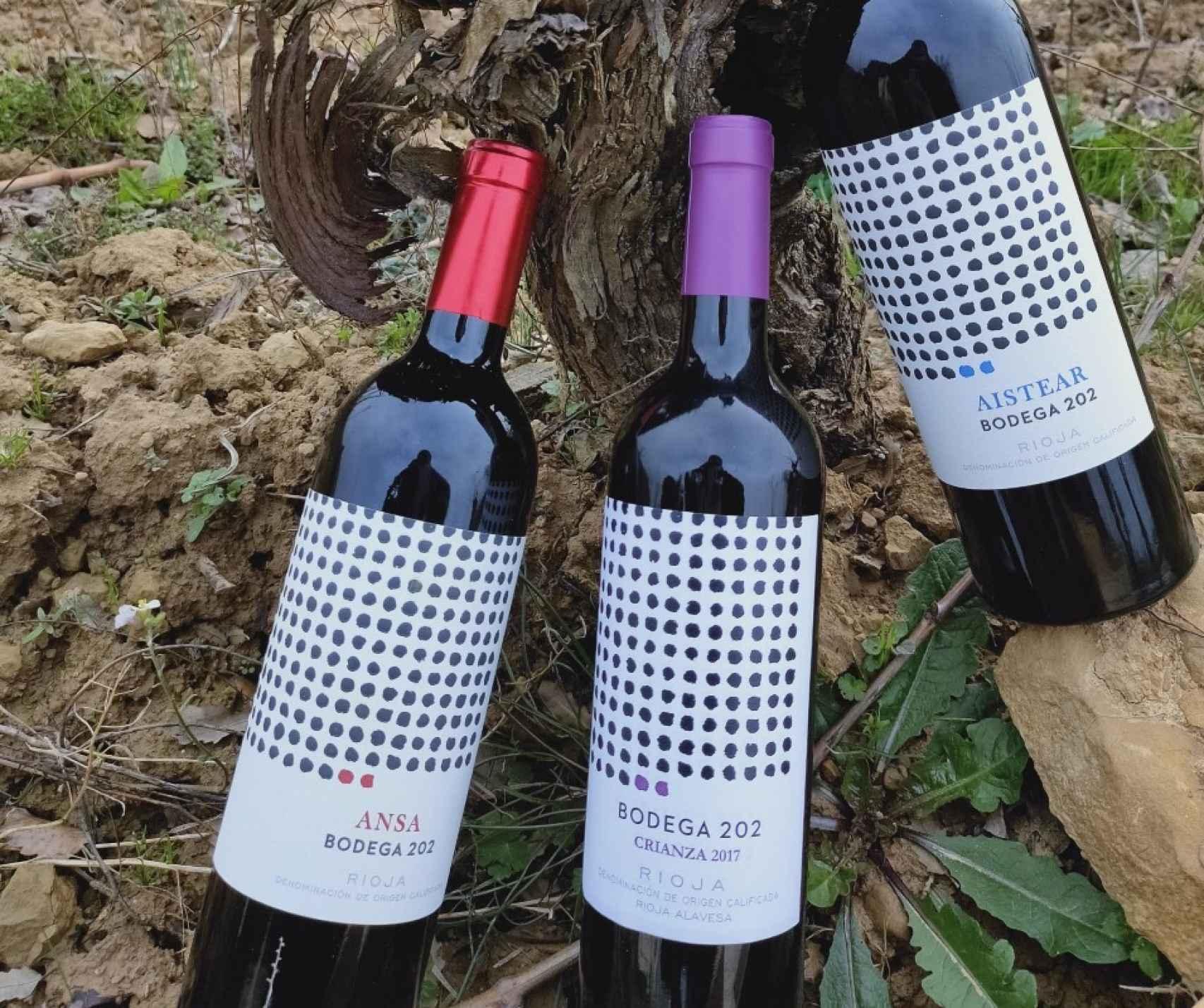 Ansa 2016 y los vinos de Bodega 202.