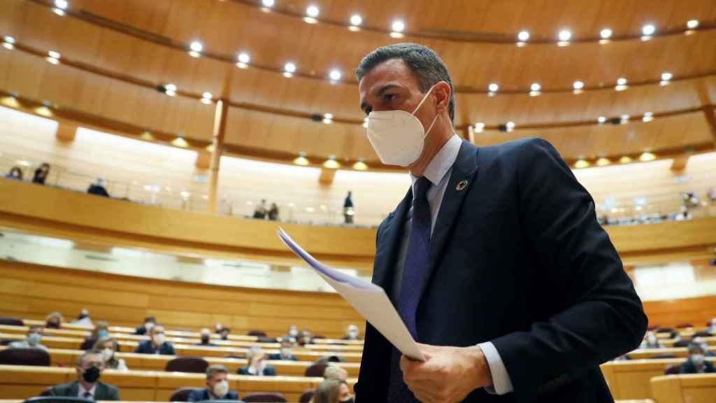 El presidente del Gobierno, Pedro Sánchez, tras su intervención en la sesión de control en el Senado.