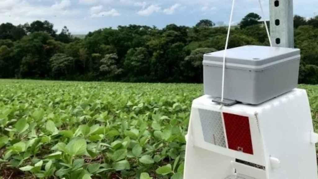 Trampa inteligente para monitorear plagas. Foto: Tarvos