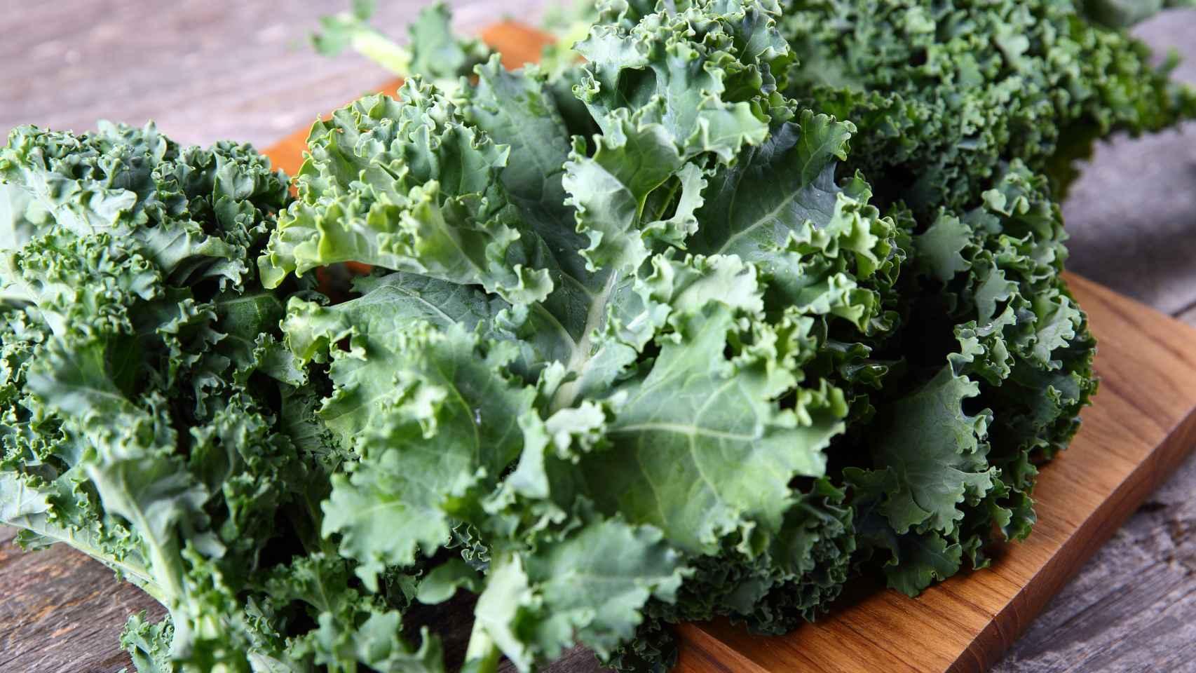 Unas hojas de kale, o col rizada.