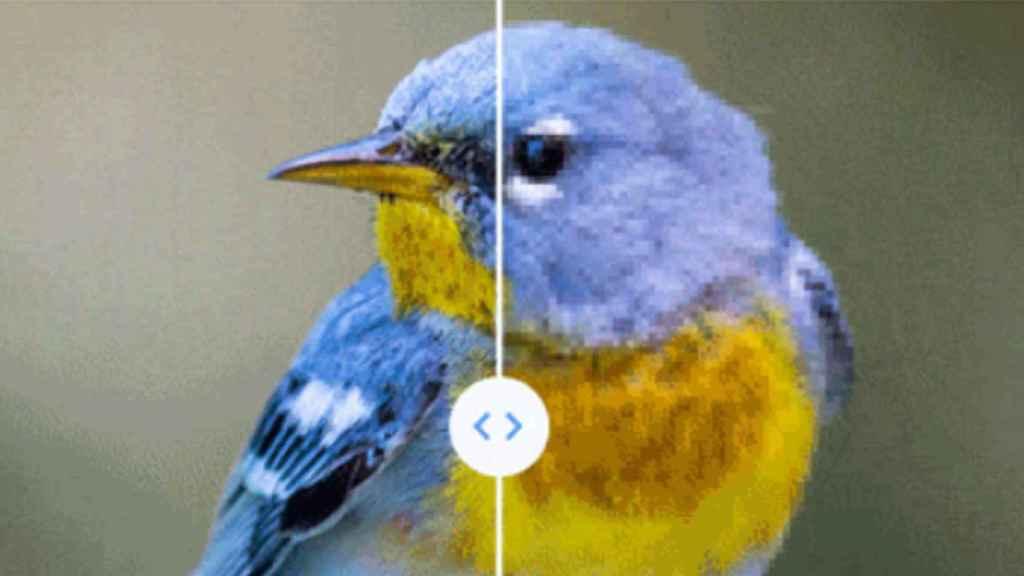 Comparativa de Google entre una foto en calidad original y modificada
