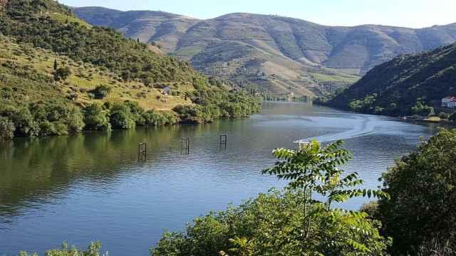 Ruta enológica y patrimonial por la Ribera del Duero