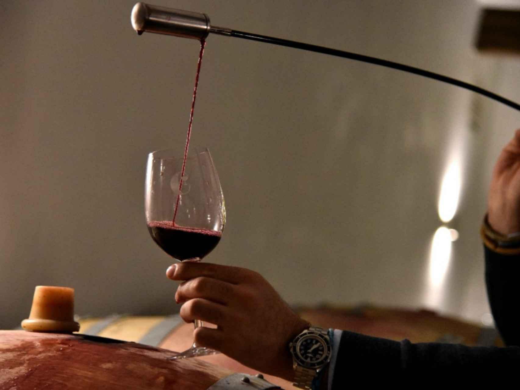 Los grandes vinos no tienen que ser los más caros.
