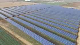 Parque fotovoltaico instalado por la empresa ciudadrealeña I+D Energías. Foto: I+D ENERGÍAS