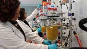 Dos investigadoras trabajan en uno de los laboratorios de REDIT.
