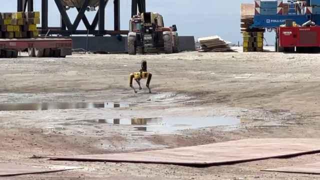 El perro robot Spot en la zona de la explosión de SpaceX