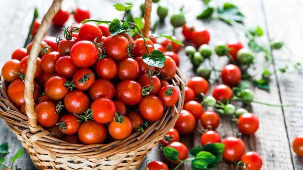 José Mota reconoce que en su nevera nunca faltan los tomates Cherry.