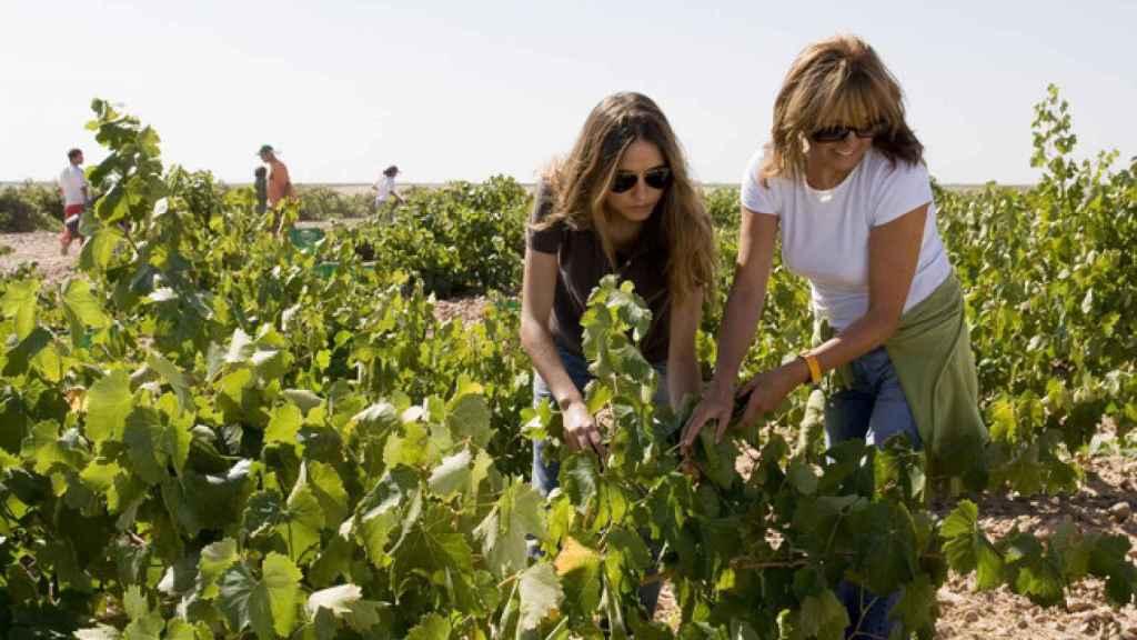 Victoria Pariente y Martina Prieto Pariente, en sus viñedos de La Seca.