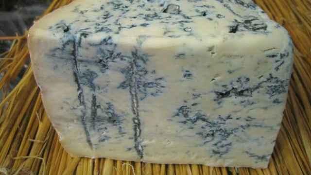 Un queso gorgonzola.