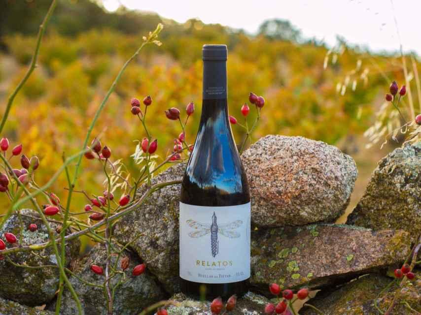 Relatos es un vino que habla de su origen.