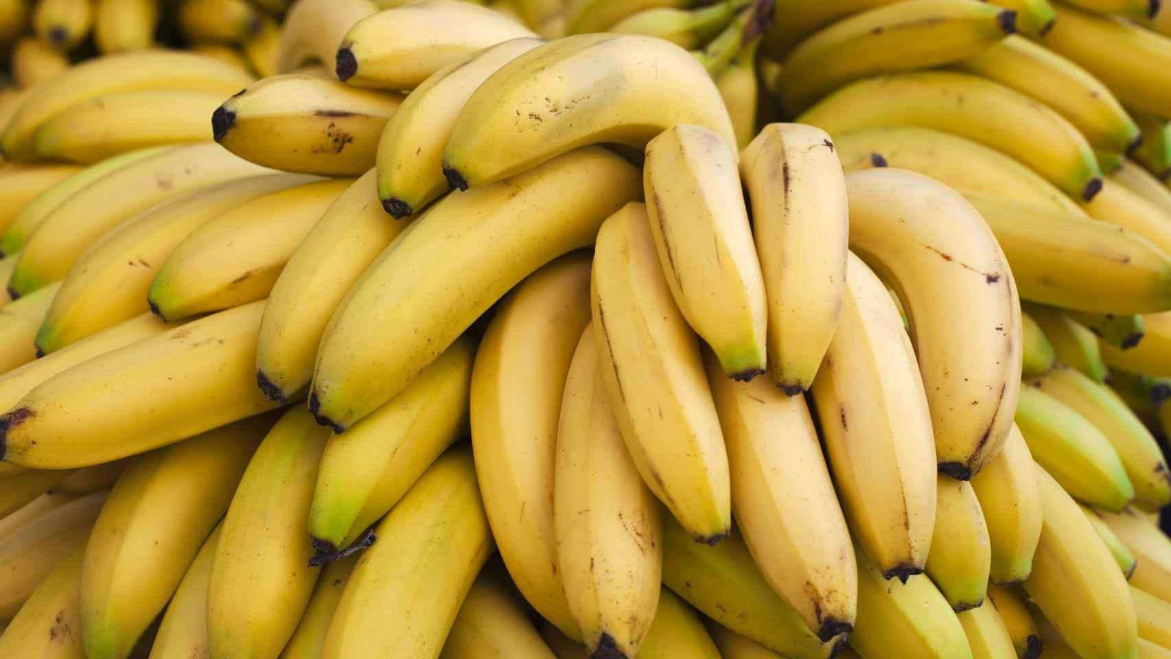 Plátanos amarillos.