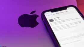 iPhone descargando 14.4.1.