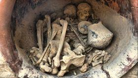 Los dos individuos hallados en la tumba 38 de La Almoloya.