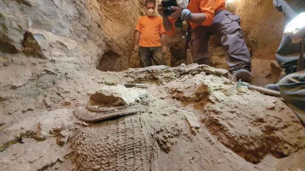 Una cesta de 10.000 años de antigüedad hallada en la misma cueva que el pergamino bíblico.