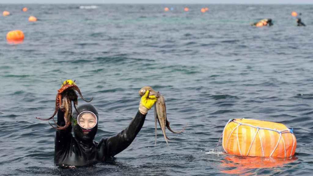 Una mujer del mar sale a la superficie con un par de pulpos que ha capturado.