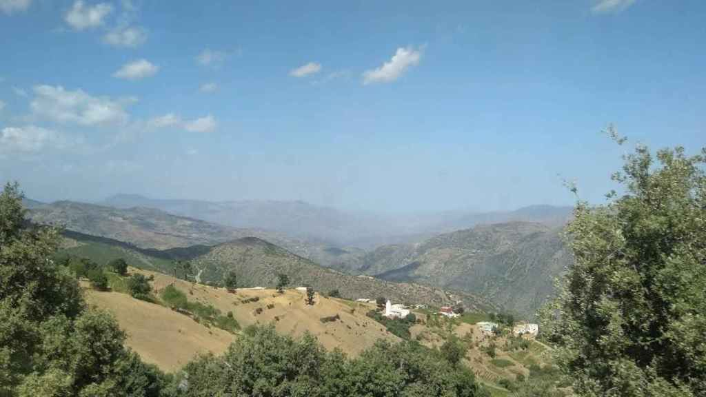 El cultivo ilegal ha supuesto la deforestación de los grandes montes del Rif.
