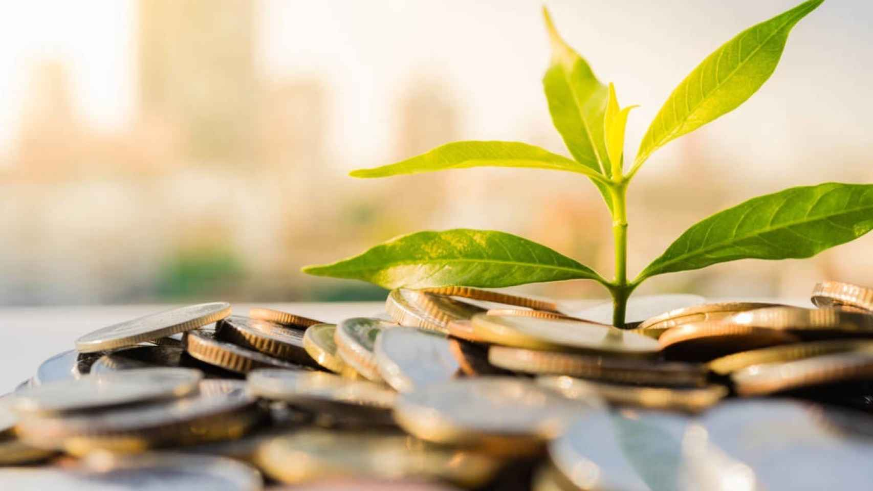 Fiebre por la sostenibilidad en las empresas españolas, los criterios ASG están de moda para los fondos de inversión