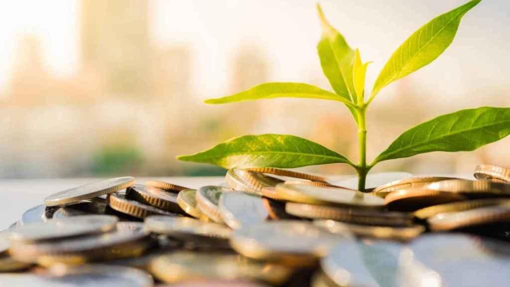 Finanzas y sostenibilidad.