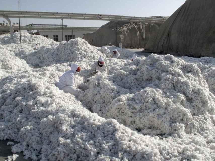 Planta de procesamiento de algodón en la ciudad de Aksu.
