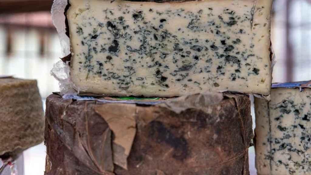 Una cuña de queso Cabrales.