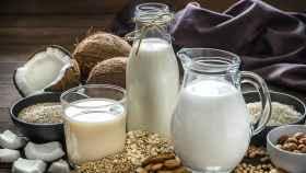 Aprende a conseguir tu propia leche vegetal en casa