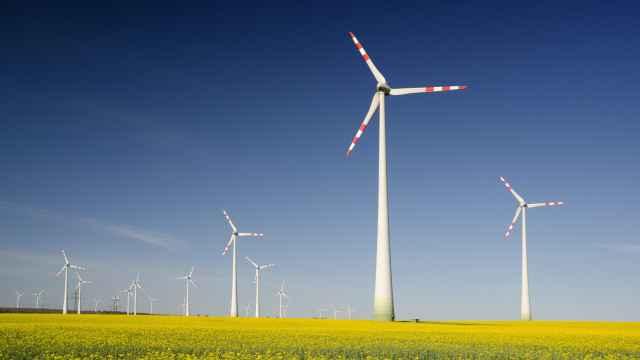 Imagen relativa a las finanzas sostenibles.