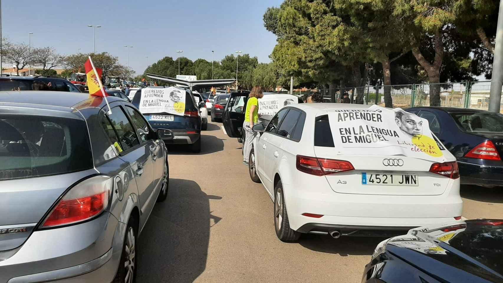 Manifestación en defensa de la libertad de elección de  la lengua en Educación en Pilar de la Horadada.