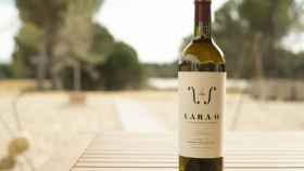 Lara O, el primer vino blanco Crianza de la D.O. Ribera del Duero