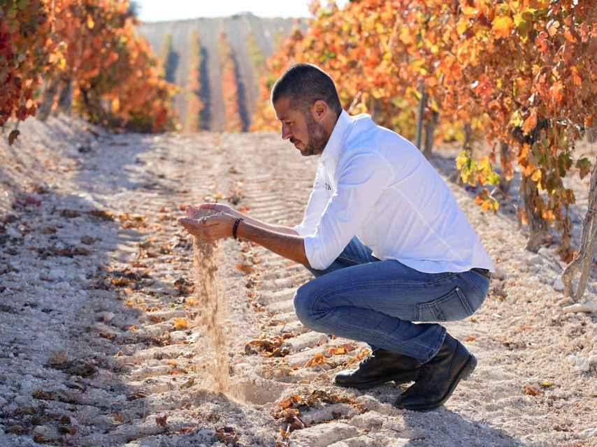 Vicente Pliego en el viñedo.