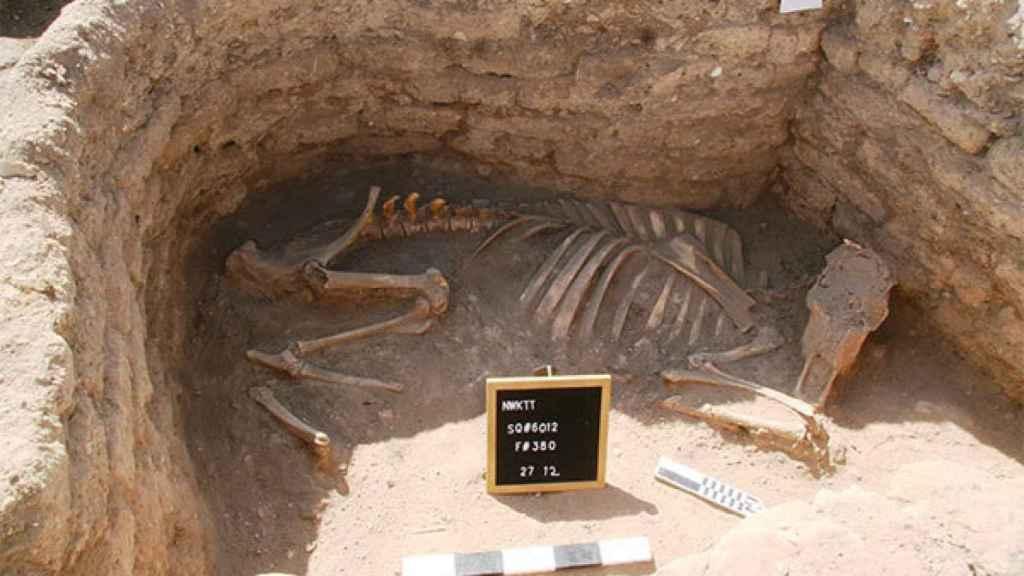 Restos descubiertos de una ciudad oculta en Egipto.