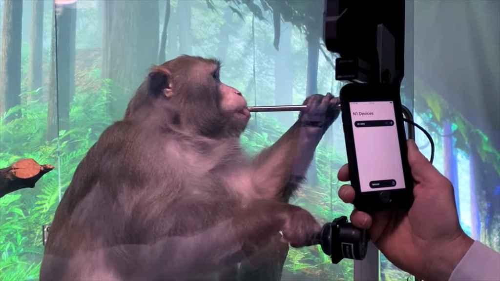 Puedes interactuar con los dispositivos N1 mediante el smartphone.
